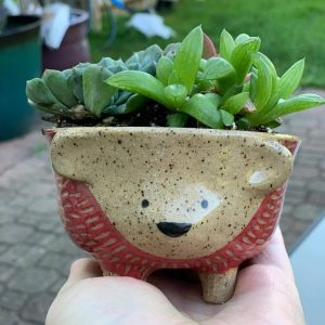 Idle Hands Pottery - Chicago Artisan Market
