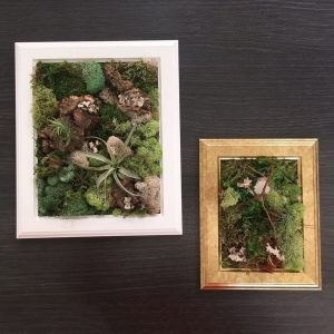Living Collage DIY: Create a Framed Plant Painting