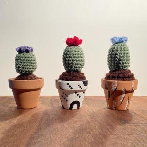 True Lovlies at Chicago Artisan Market (Crochet Cactus)